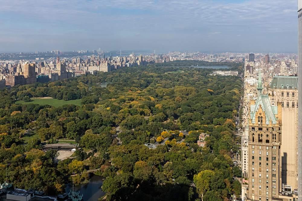 从公寓内可将中央公园美景尽收眼底。(图片来源:DOLLY LENZ REAL ESTATE)